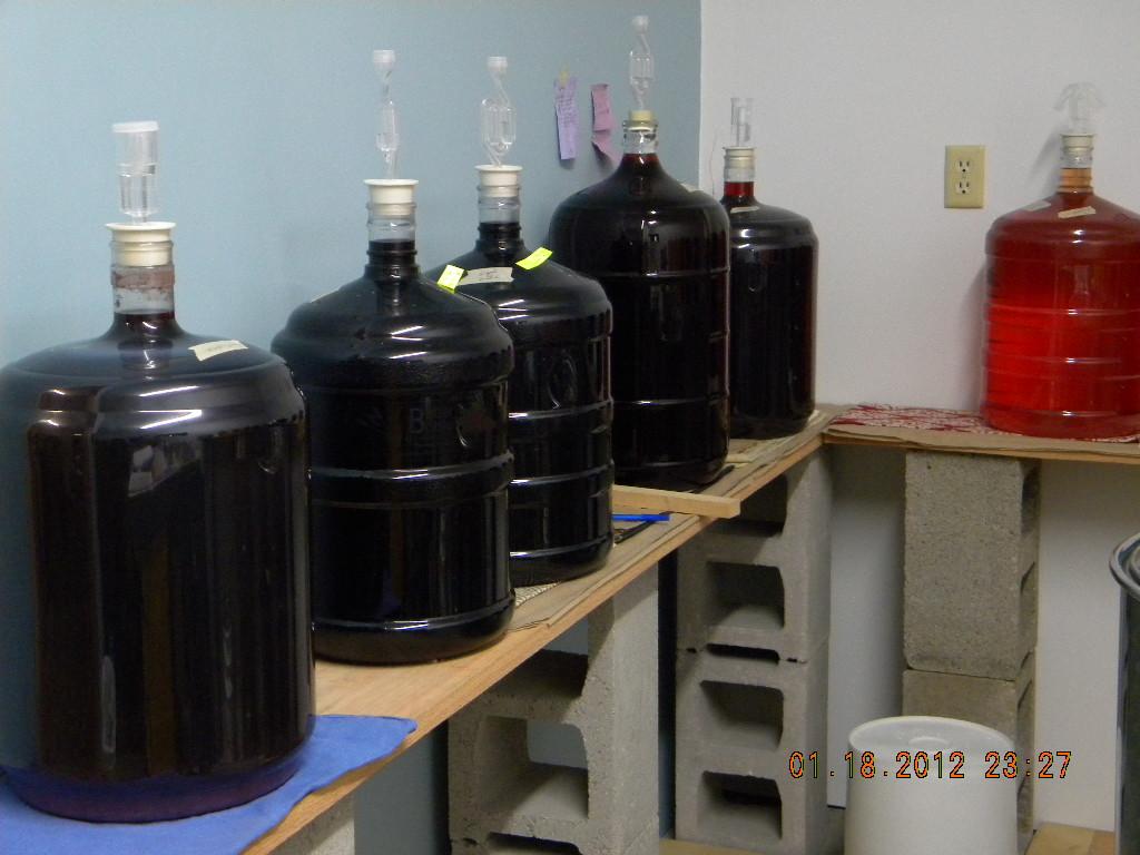 Fermentation of Test Wines